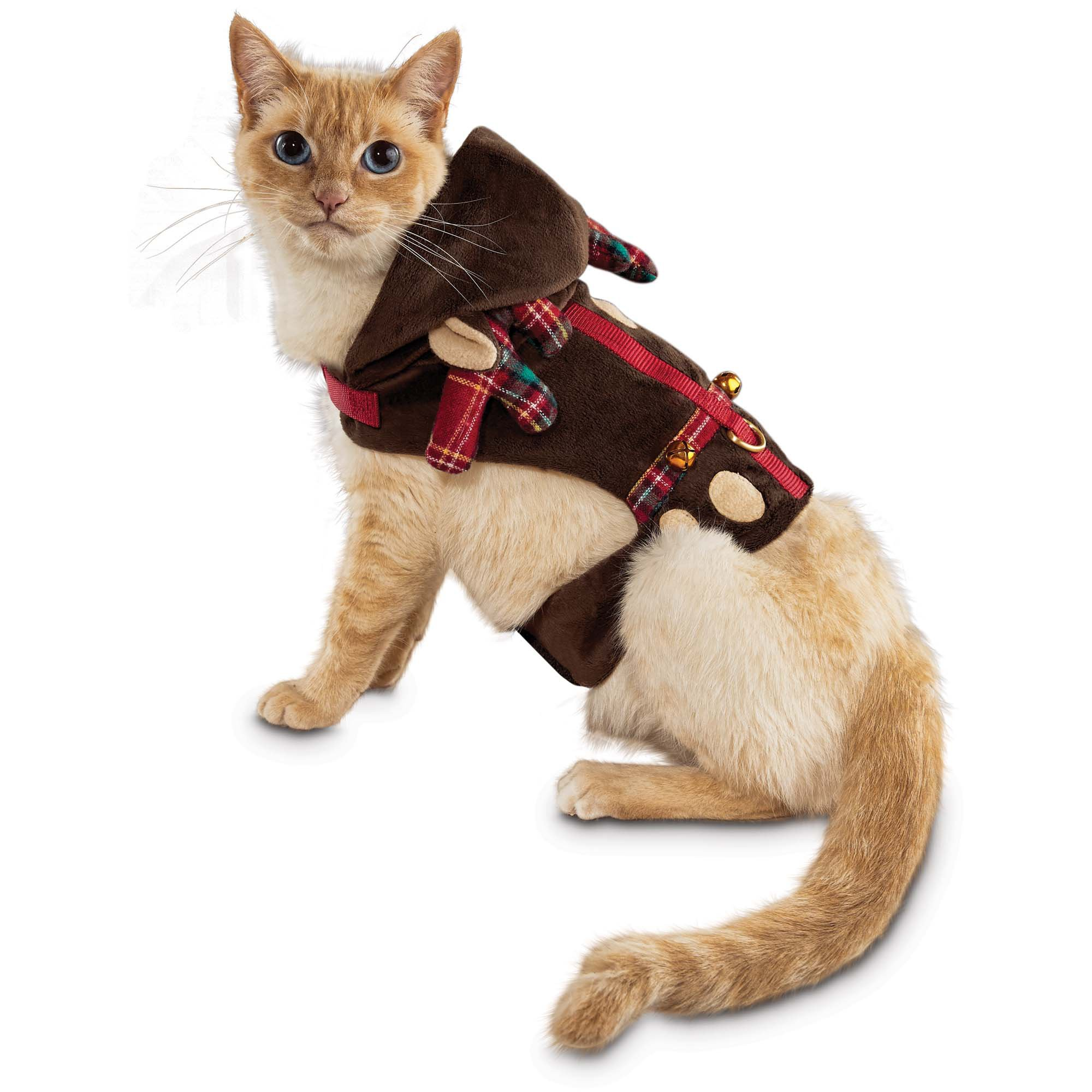 Best Harness To Keep A Cat Vest