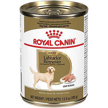 Royal Canin Breed Health Nutrition Labrador Retriever Loaf In Sauce Dog Food