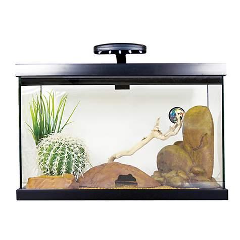 exo terra leopard gecko starter kit petco