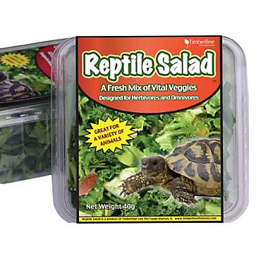 Timberline Reptile Salad