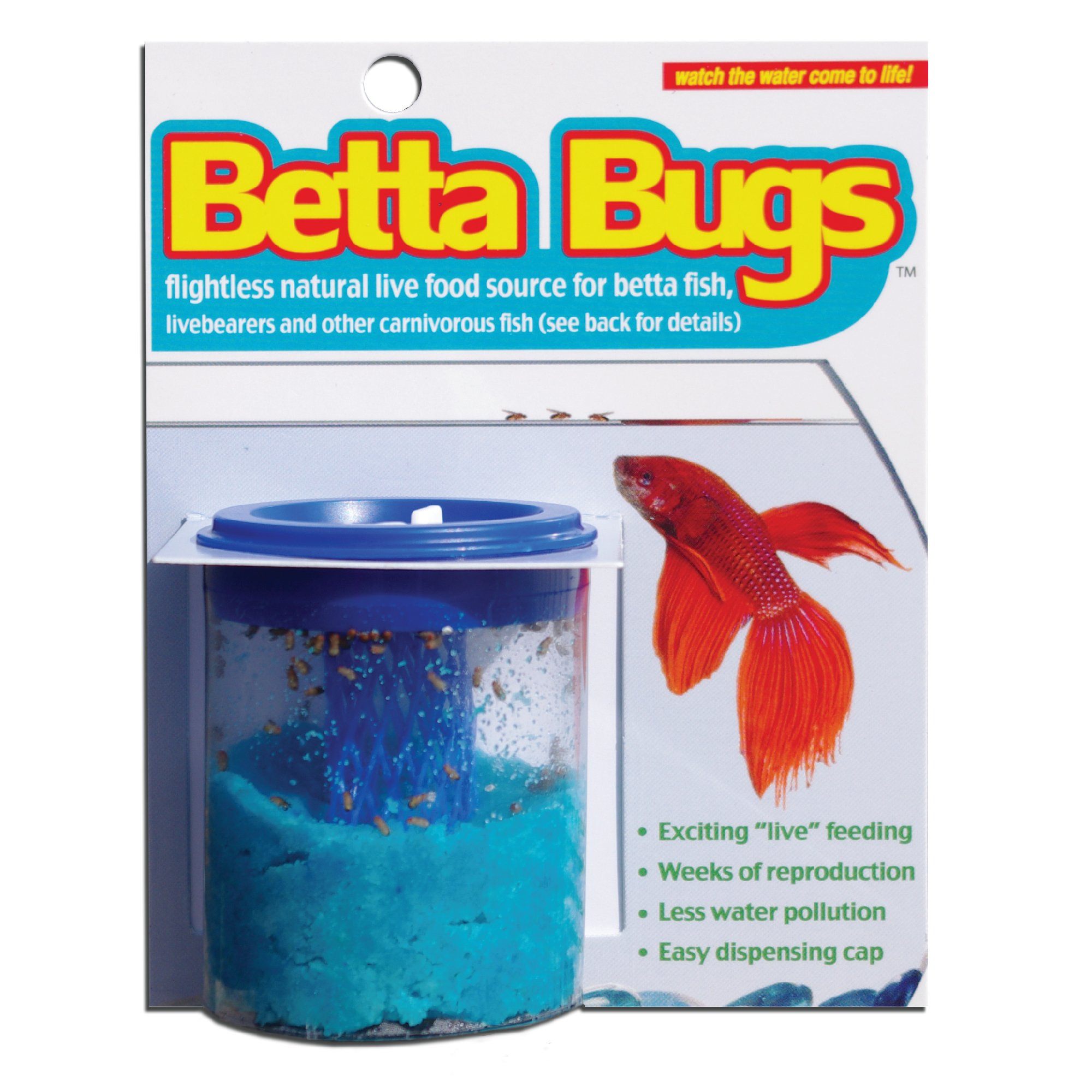 Timberline betta bugs petco for Food for betta fish