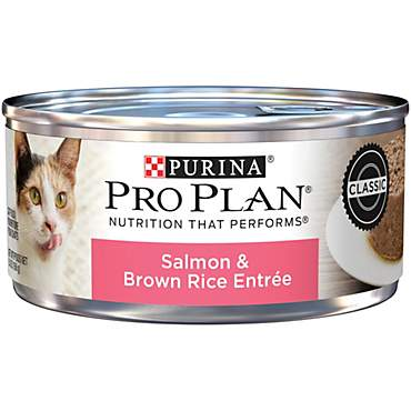 Purina Pro Plan Savor Adult Salmon & Brown Rice Entree Classic Wet Cat Food