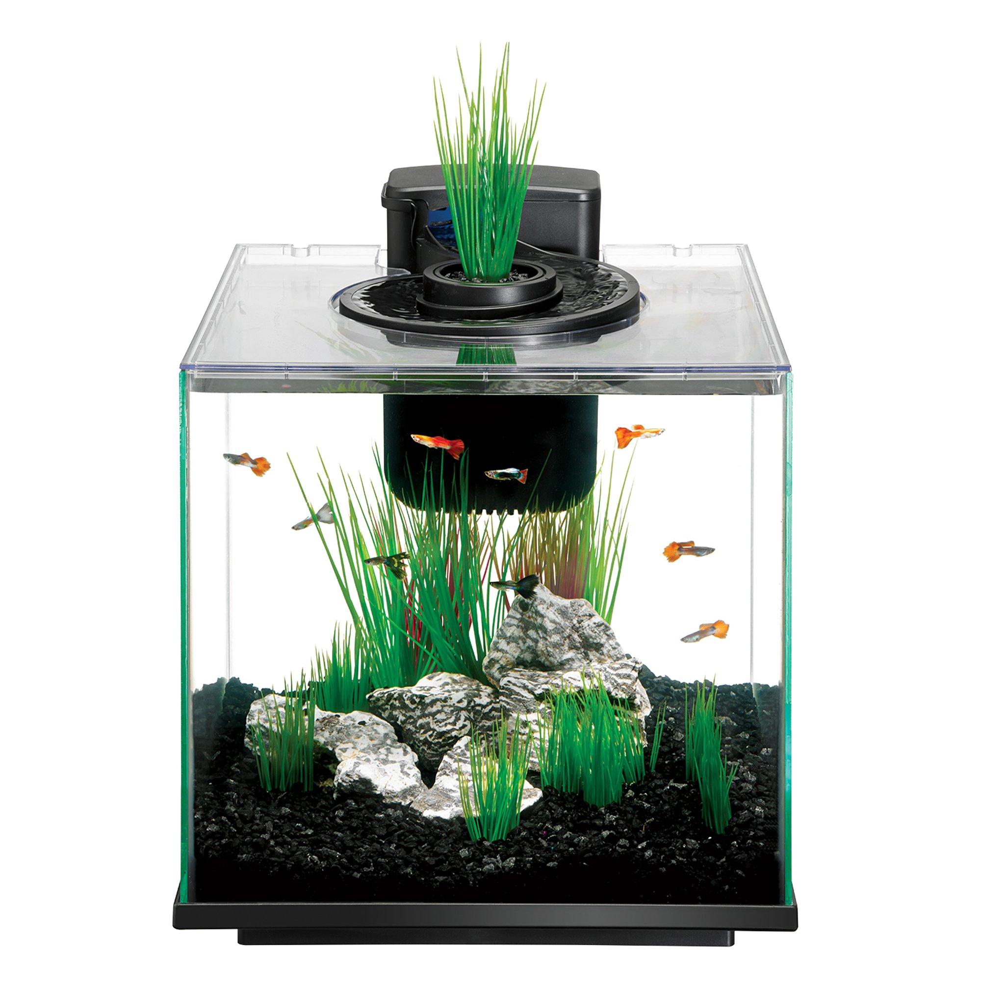 Aqueon 8 8 gal aqua springs kit petco for Petco small fish tank