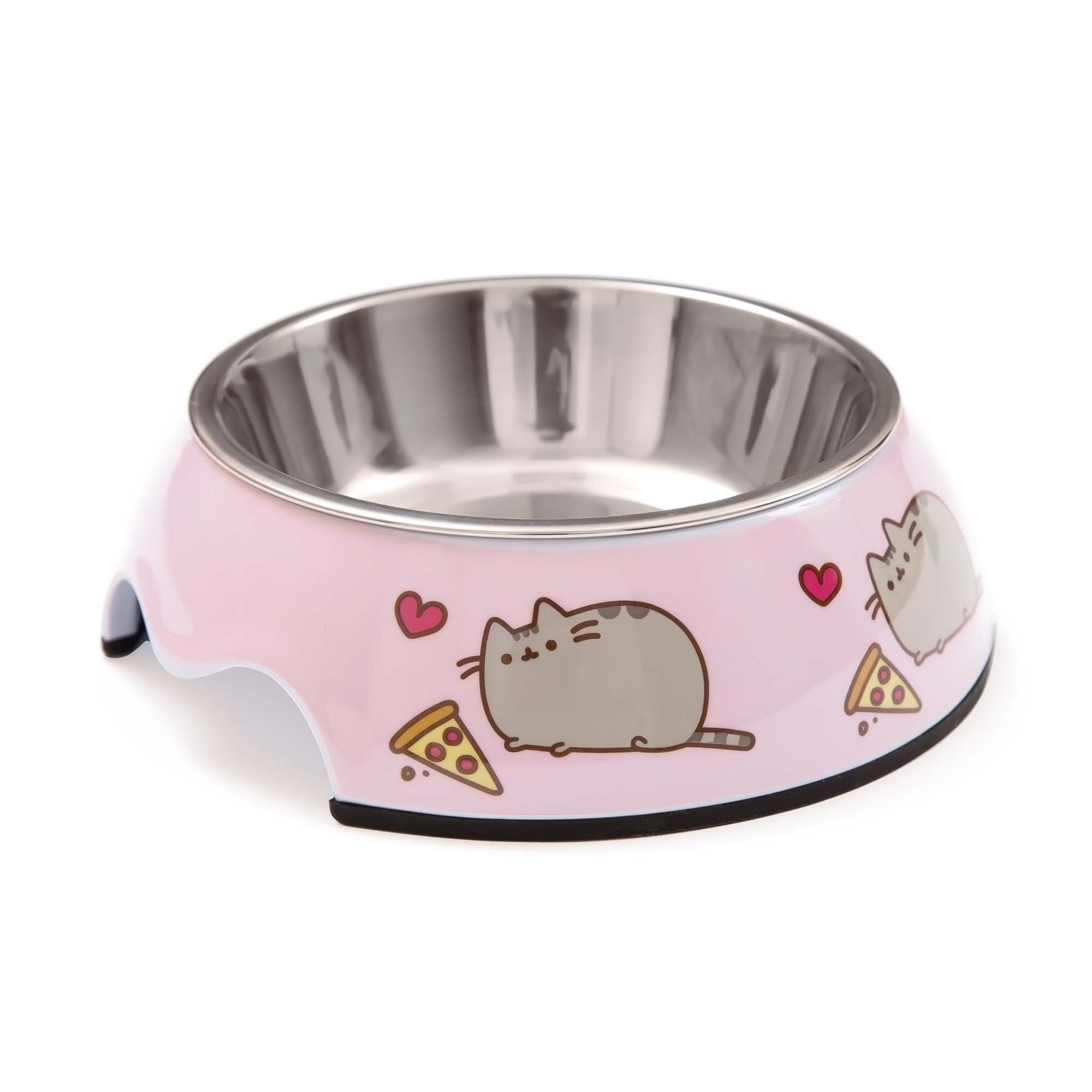 james pin voice with andrew meal bowl food day timed recorder automatic feeder pet wet