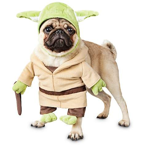 Star Wars Yoda Illusion Dog Costume  sc 1 st  Petco & Star Wars Yoda Illusion Dog Costume | Petco