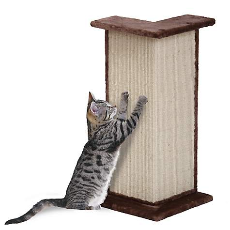 Wall Corner Cat Scratcher Atcsagacity Com