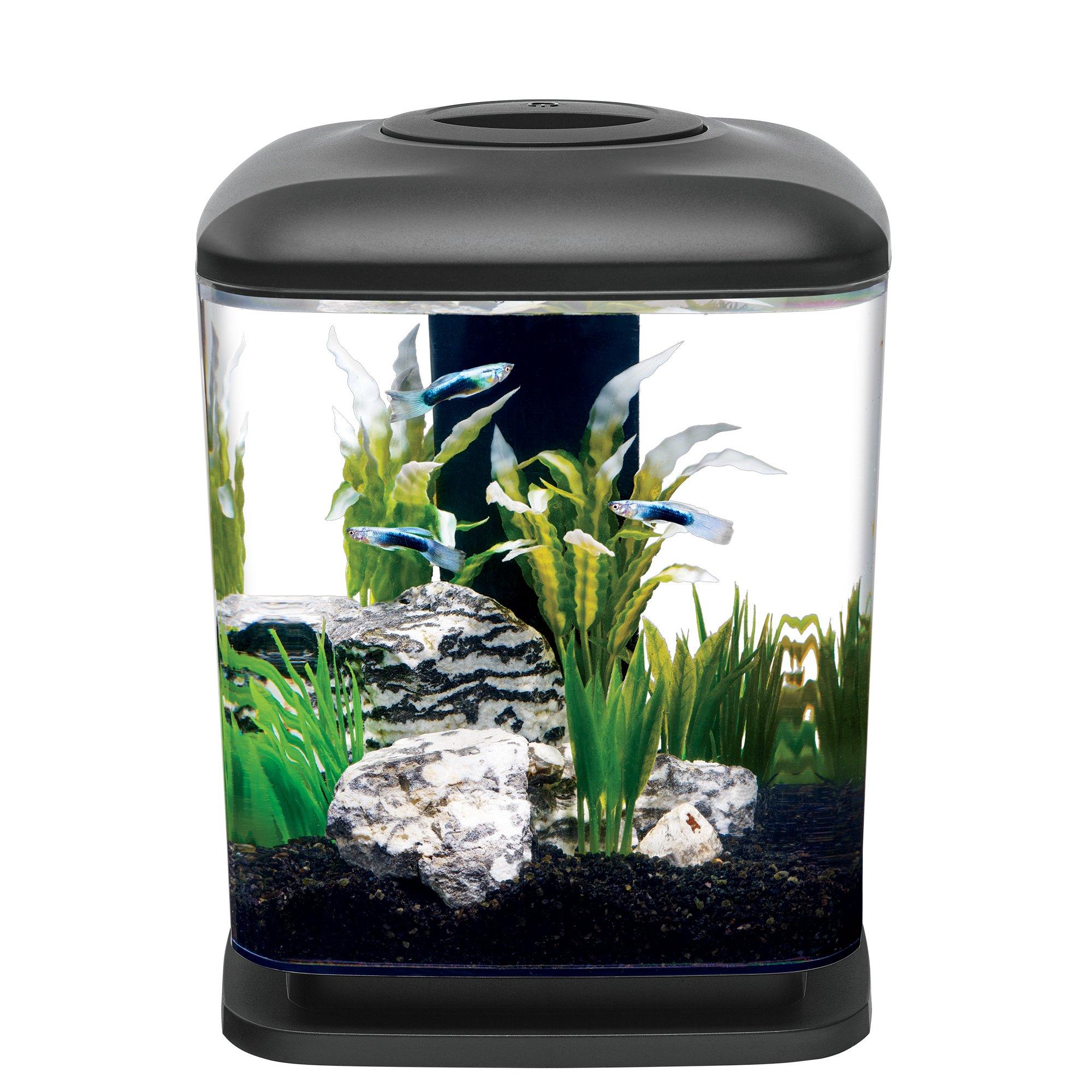 Aqueon led mini cube 1 6 gal petco for Petco small fish tank