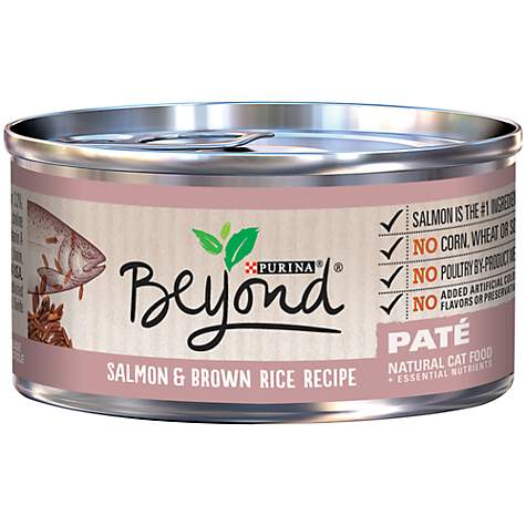Purina Beyond Salmon & Brown Rice Recipe Adult Wet Cat Food