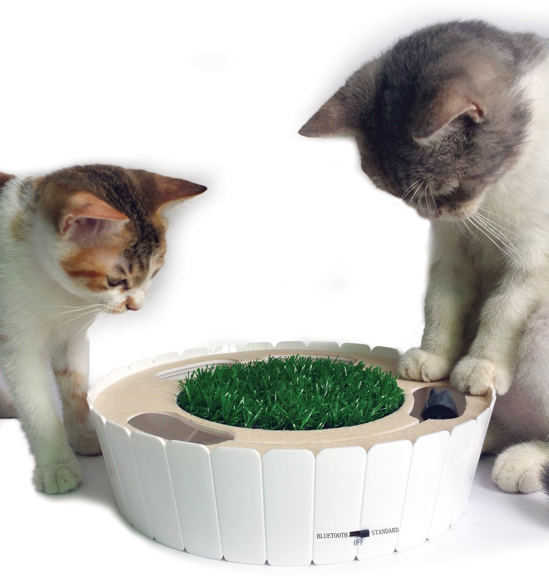 automatic plus for nutri supplies cats vetiq pet feeder feeders animates vit