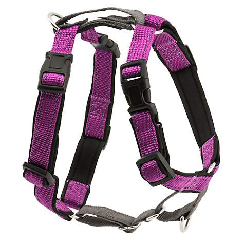 Petsafe Plum Three in One Harness