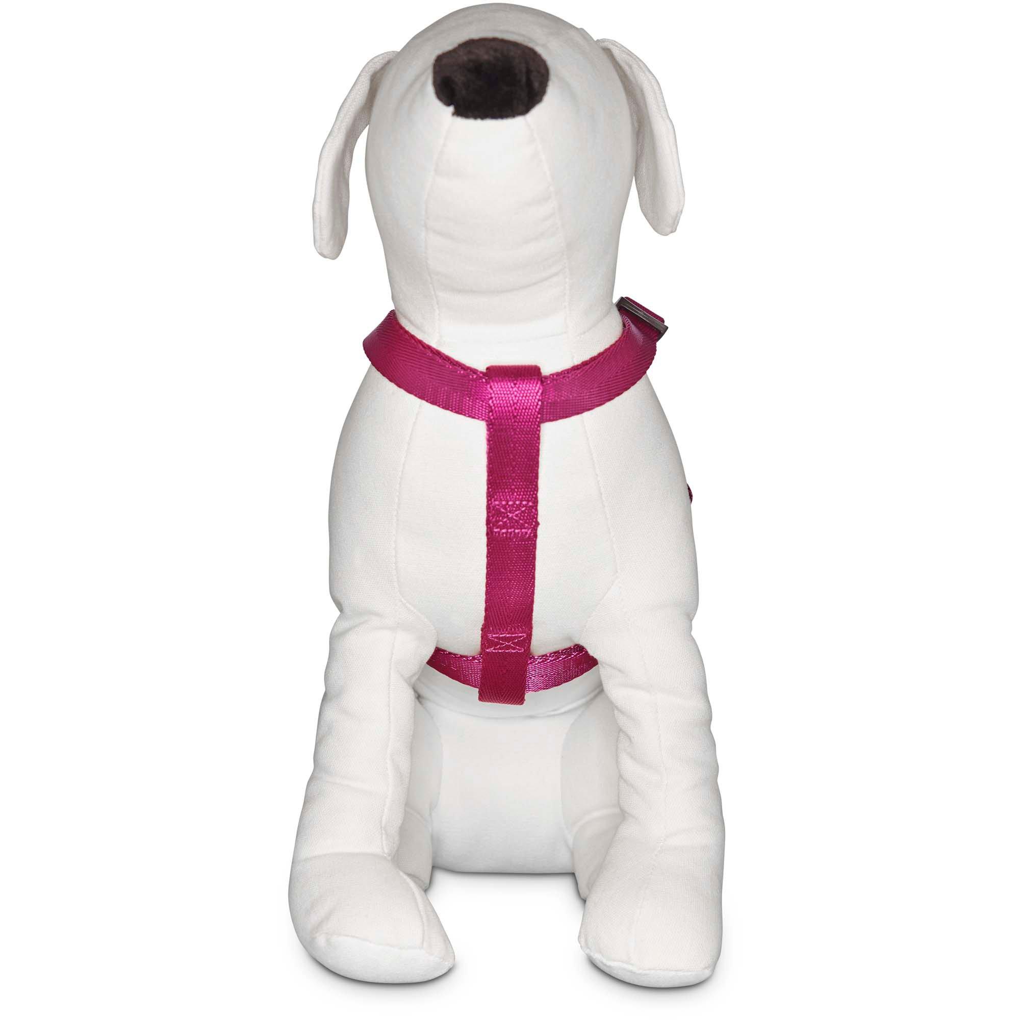 Good2go Adjustable Berry Dog Harness Petco