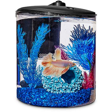 Imagitarium Cylindrical Betta Fish Desktop Tank Kit 1 6 Gal Petco