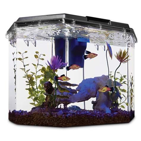imagitarium semi-hexagonal aquarium kit   petco