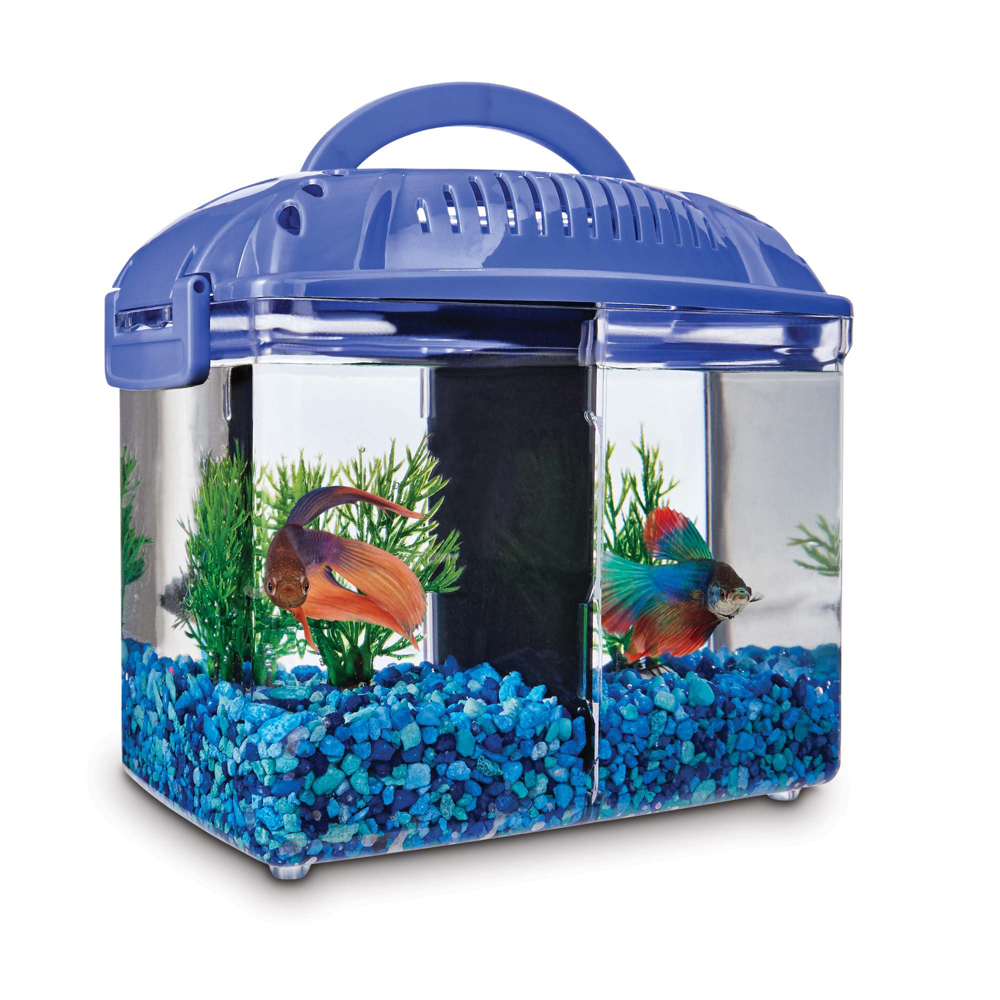 Imagitarium betta fish dual habitat tank in blue petco for Betta fish tanks petco