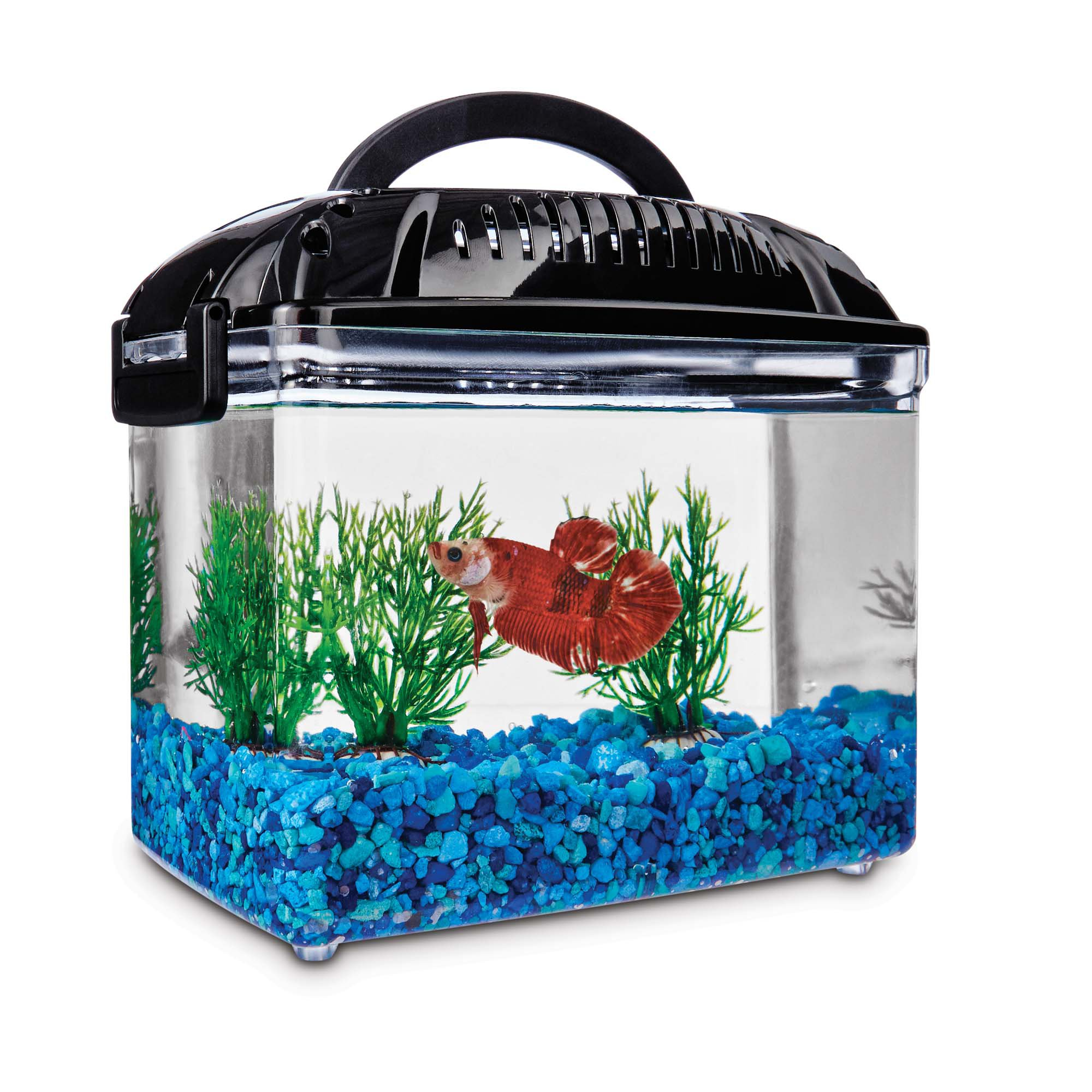 Imagitarium betta fish dual habitat tank in black petco for Betta fish tanks petco