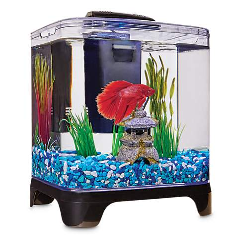 Imagitarium betta desktop kit petco for Betta fish tanks petco