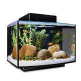 Fish tanks saltwater freshwater aquariums supplies for How much is a fish tank