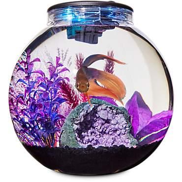 Imagitarium Freshwater Globe Kit 31 Gal Petco