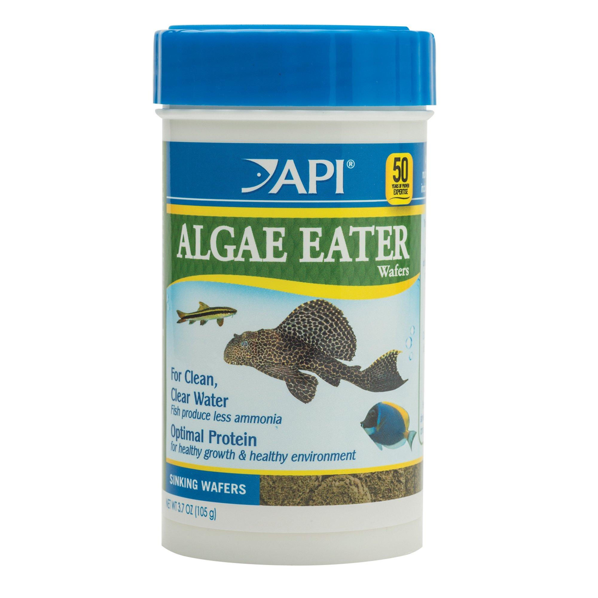 Api algae eater wafers algae wafer fish food petco for Petco fish food
