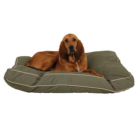 Carolina Pet Rectangular Napper in Sage Canvas with Khaki Cording