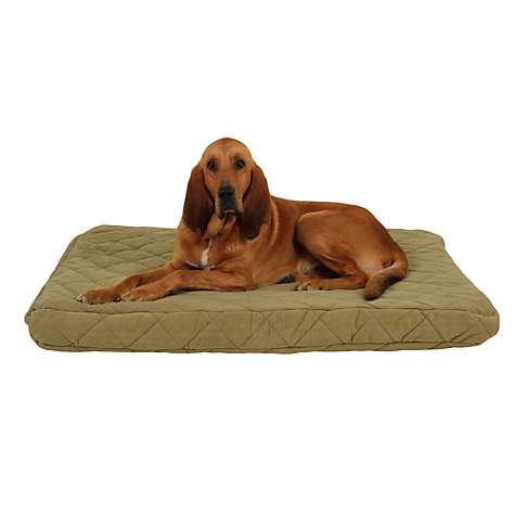 Carolina Pet Jamison Protector Pad Quilted Orthopedic Bed in Sage