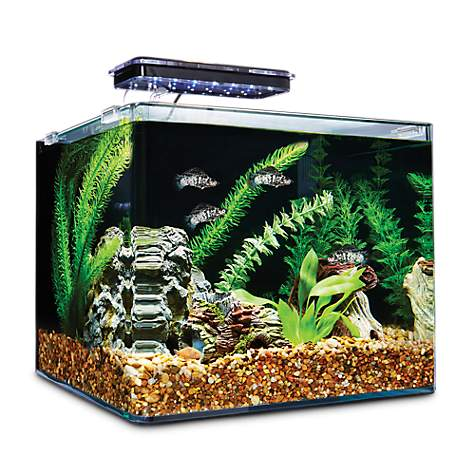 84 deals were found for Petco Fish Tanks. Deals are available from 9 stores and 6 brands. An additional discount is available for 12 items. Last updated on December 2, Scanning all available deals for Petco Fish Tanks shows that the average price across all deals is $