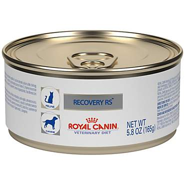 Royal Canin Veterinary Diet Feline And Canine Recovery RS In Gel Wet Cat FoodAnd Wet Dog Food