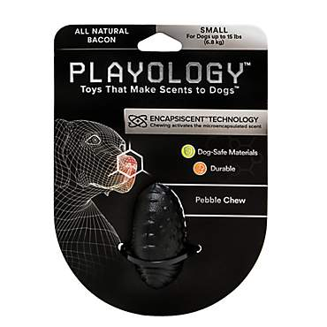 Playology Pebble Chew Dog Toy Bacon Scent
