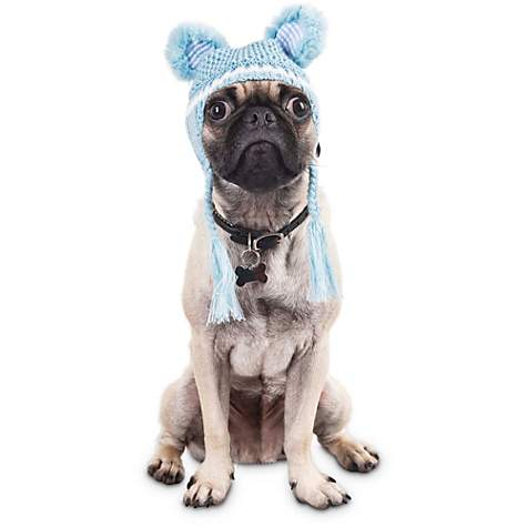 Bond & Co. Mint Beary Warm Ears Dog Hat