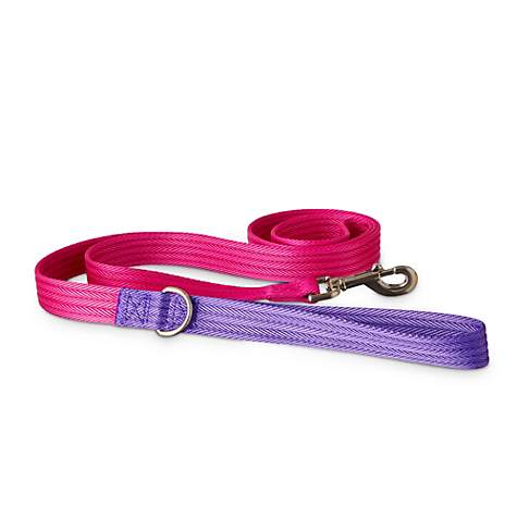Good2Go Purple and Pink Two Tone Dog Leash