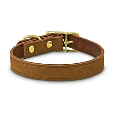 Bond & Co. Copper Suede Dog Collar