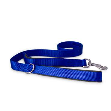 Good2Go Blue 2-in-1 Dog Leash, 6 ft.