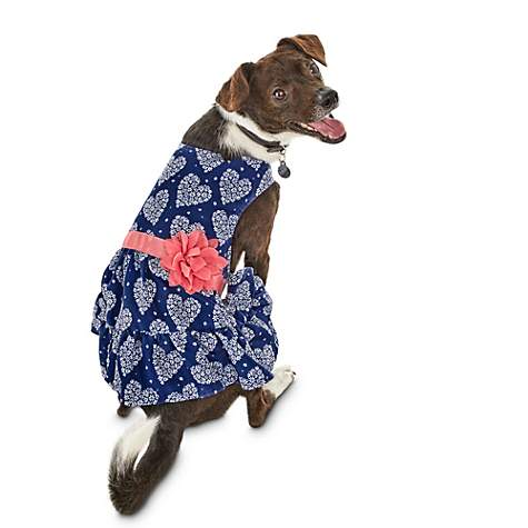 Bond & Co Daisy Heart Wrap Dog Dress