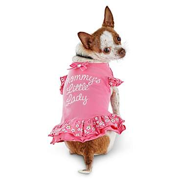 Bond & Co Mommy's Little Lady Floral Dog Dress