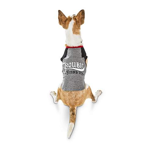 Bond & Co Trouble Finds Me Raglan Dog Shirt