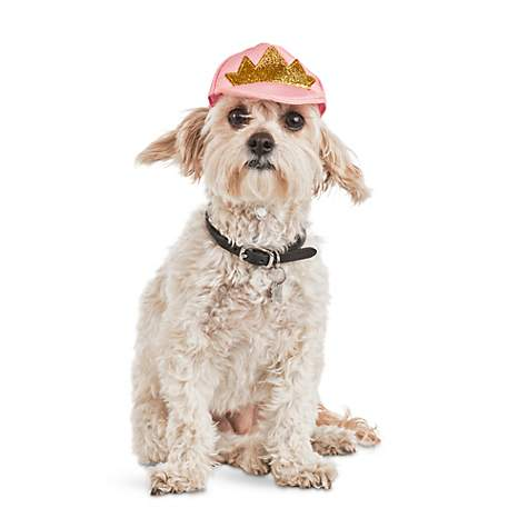 b0e8096b Bond & Co Crowned Pink Dog Cap | Petco