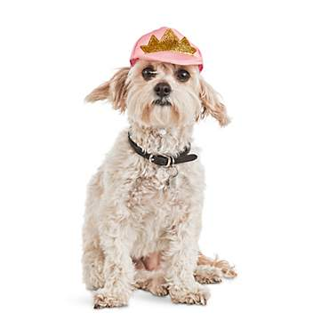Bond & Co Crowned Pink Dog Cap