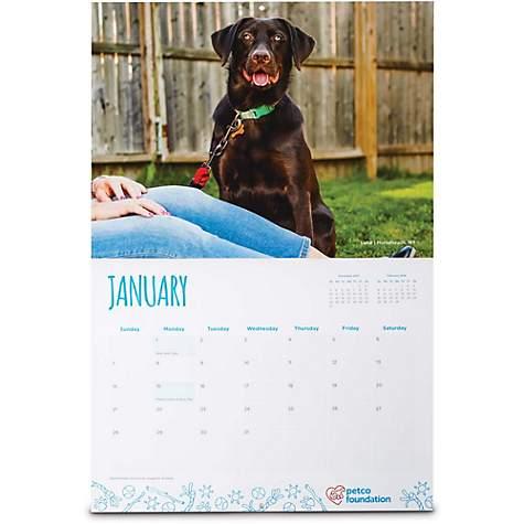Petco Foundation 2018 Wall Calendar Petco