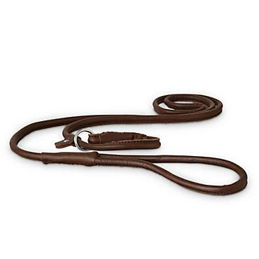 Good2Go Rolled Leather Dog Slip Leash