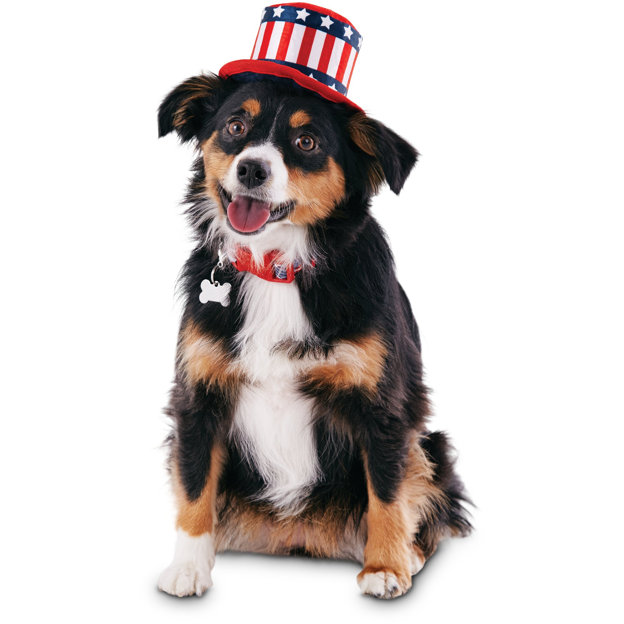d709ddd05f3 Patriotic Pets Uncle Sam Dog Hat