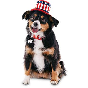 Patriotic Pets Uncle Sam Dog Hat