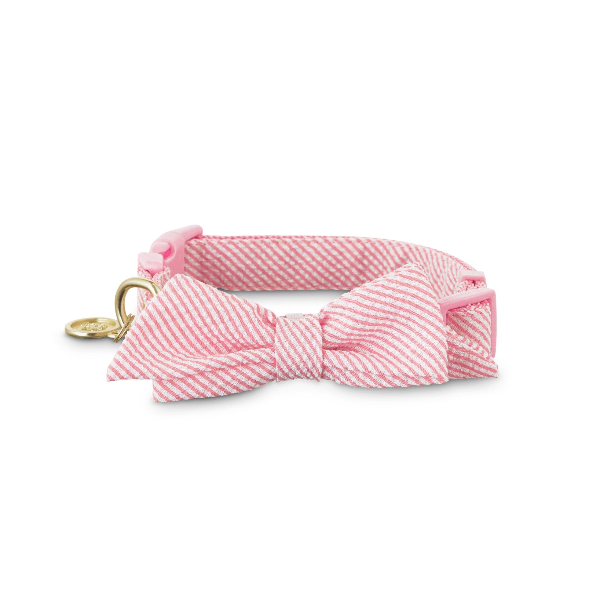 Bond & Co. Pink Seersucker Bow Tie Dog Collar | Petco at Petco in Braselton, GA | Tuggl