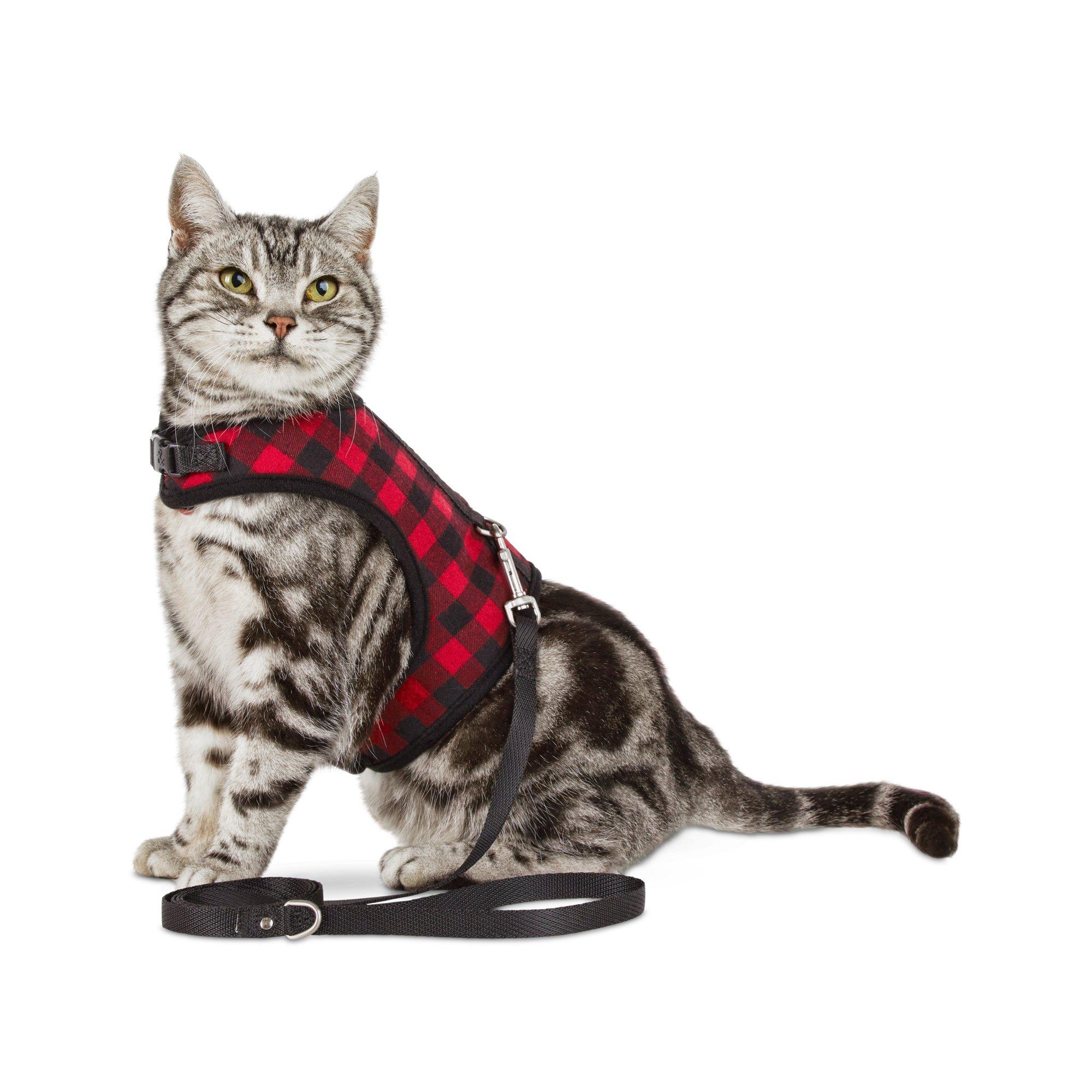 Bond & Co. Buffalo-Check Cat Harness and Leash Set | Petco