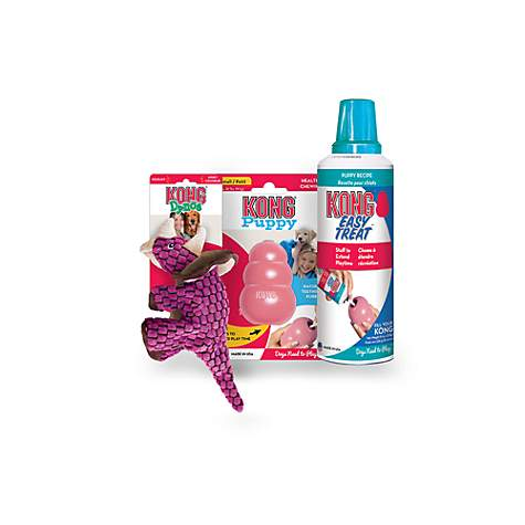 KONG Puppy, Dynos Triceratops & Puppy Easy Treat Bundle