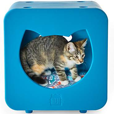 Kitty Kasas Bedroom Blue for Cat