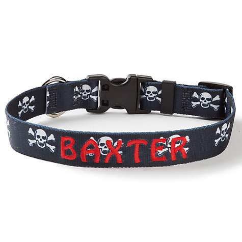 Custom Personalization Solutions Personalized Skulls Dog Collar