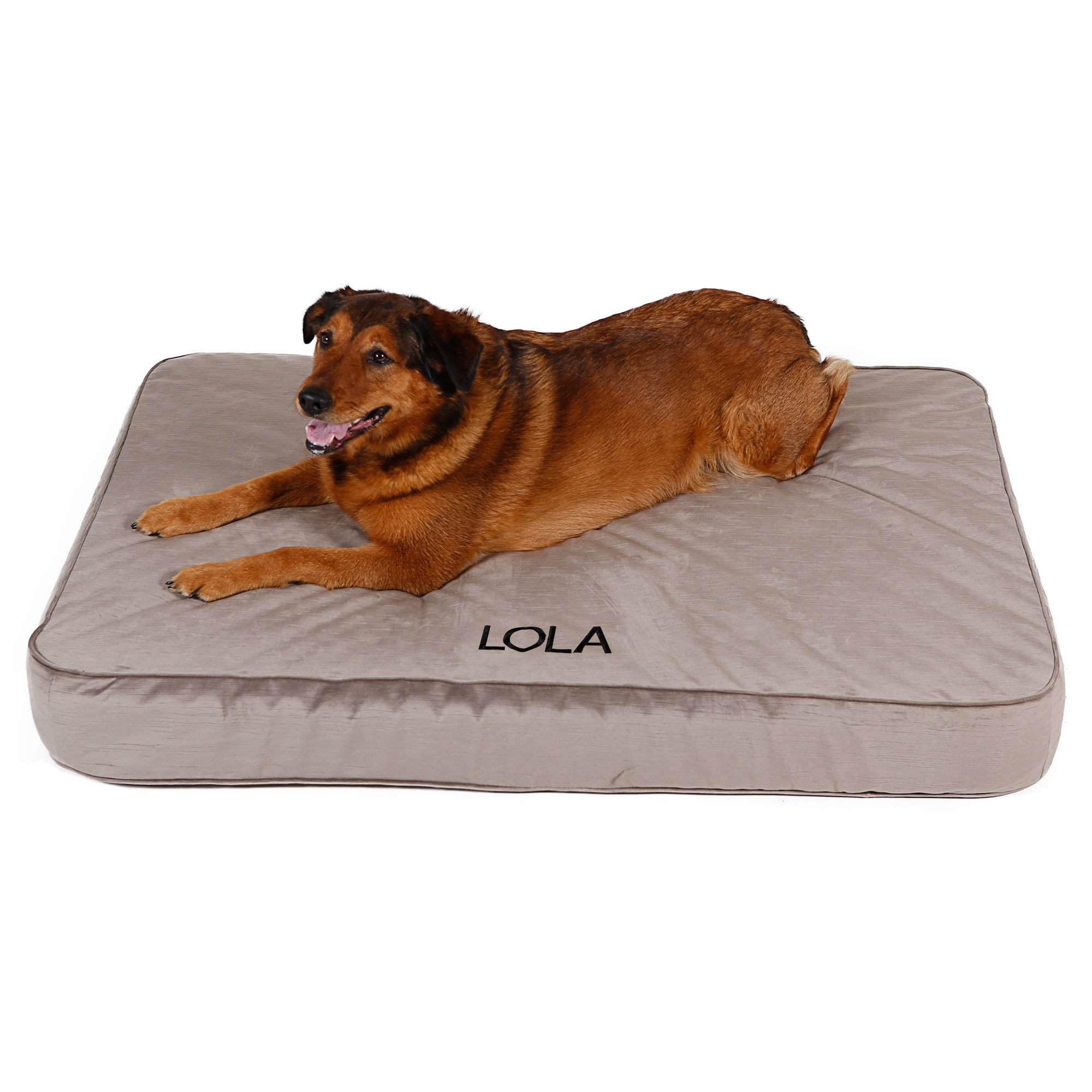 Foster Smith Dog Beds