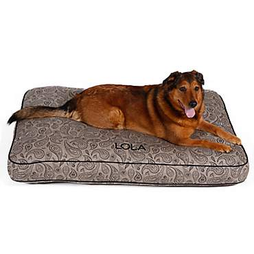 Doctors Foster + Smith Personalized Ultimate Classic Taupe Paisley Dog Beds