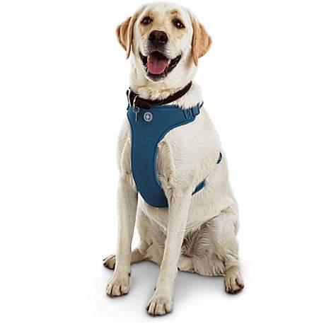 Jubilee Blue Large Dog Harness, XX-Large/-Large 2843861 | PetCoach