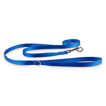 Good2Go Blue Nylon Dog Leash, 1/2